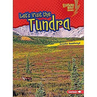 Vieraillaan Tundra (Lightning Bolt kirjoja biomi tutkimusmatkailijat)