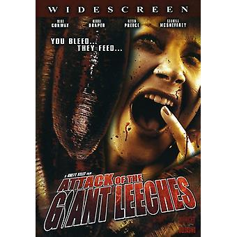 Angreb af Giant Leeches [DVD] USA importen
