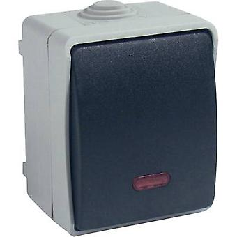 GAO Control switch Standard Grey 9877