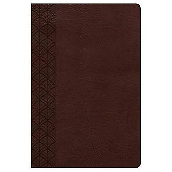 The CSB Study Bible for Women, Turquoise/Sand Leathertouch