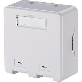Network outlet Surface-mount Unequipped 2 ports Metz Connect Pure white