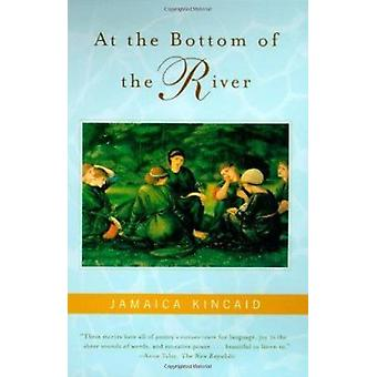 At the Bottom of the River Book