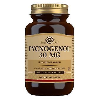 Solgar Pycnogenol 30mg Vegicaps 60 (2304)