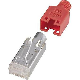 Hirose Electronic RJ45 Shielded Network Connector,CAT 5e, Red RJ45 Plug, straight Red