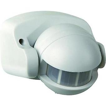 Detector de movimiento PIR pared de montaje en superficie, GAO 657 180 ° blanco IP44