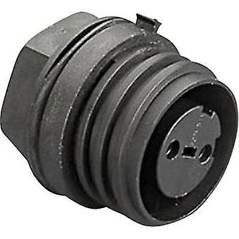 Bulgin PX0931/02/S - 2 Pole IP68 Socket Connector, 900 Series Buccaneer, Panel Mount, 32A