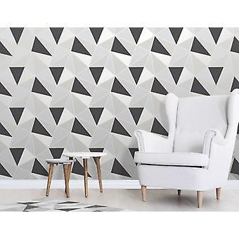 Elegante Apex Geo Sidewall carta da parati nera e argento parete decorazione 0,52 x 10,05 m
