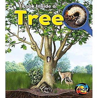 Tree: Look Inside (Heinemann First Library: Look Inside)
