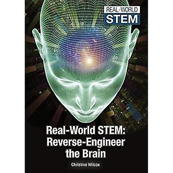 Real-World Stem: Reverse-Engineer the Brain (Real-World Stem)