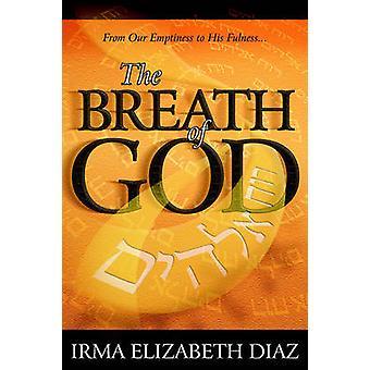 Anden från vår tomhet till hans fullhet av Diaz & Irma Elisabet