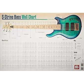 5-String Bass Wall Chart by Corey Dozier - 9780786685677 Book