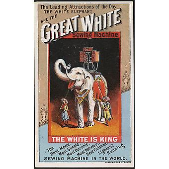 Great White Sewing Machine Poster Print Giclee