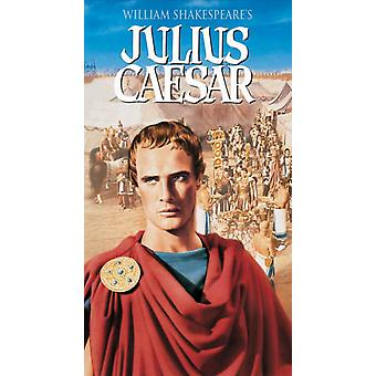 Julius Caesar Movie Poster (11 x 17)