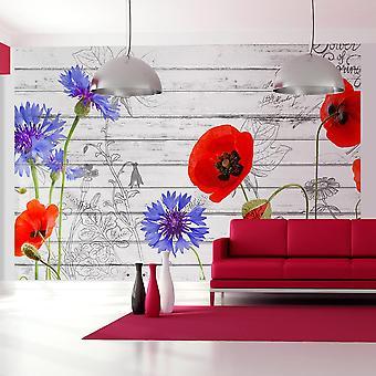 Fondos de escritorio - flores silvestres