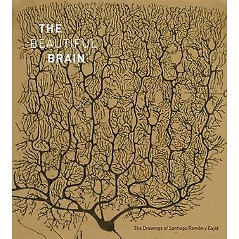 The Beautiful Brain - The Drawings of Santiago Ramon y Cajal by Larry