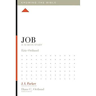 Job: A 12-Week Study (Knowing the Bible)