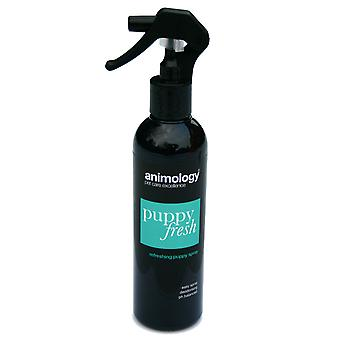 Animology hvalp frisk forfriskende Spray 250ml (pakke med 4)
