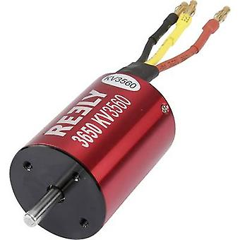 Model car brushless motor Reely kV (RPM per volt): 3650