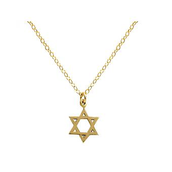 Gemshine - unisex - trailer - star of David - necklace - 925 Silver - gold plated - 13 mm
