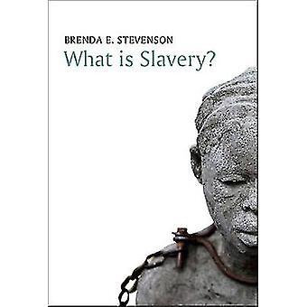 What Is Slavery by Stevenson & Brenda E