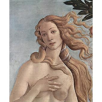 Sandro Botticelli - Eve in the Garden Poster Print Giclee