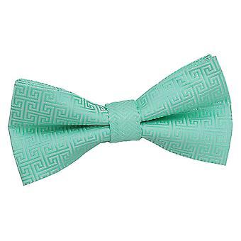 Mint groene Griekse belangrijke vooraf gebonden strikje voor jongens
