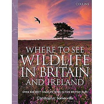Collins onde se pode ver animais selvagens na Grã-Bretanha e Irlanda: mais de 800 Melhores Sites de animais selvagens nas Ilhas Britânicas