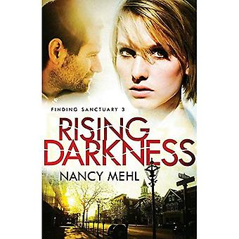 Rising Darkness (Finding Sanctuary): 3