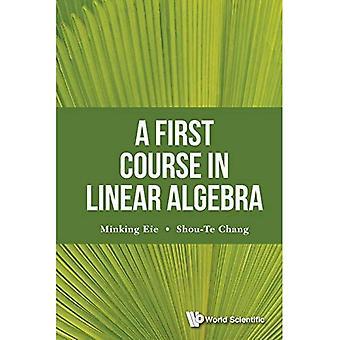 Un premier stage en algèbre linéaire