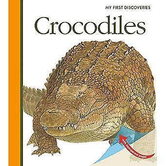 Crocodiles (My First Discoveries)
