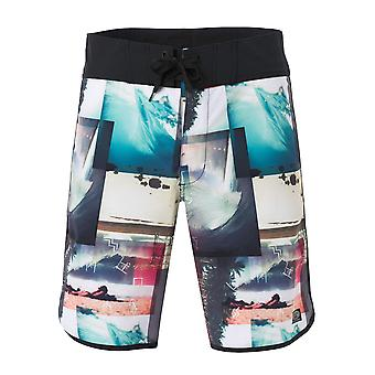 Animal Mens Boel Boardshorts
