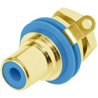 RCA connector Socket, vertical vertical Number of pins: 2 Blue Rean AV NYS367-6-CON 1 pc(s)