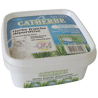 Agrobiothers Purifying Herbs Catherbe 220G Muzo (Chats , Malt et Herbes)
