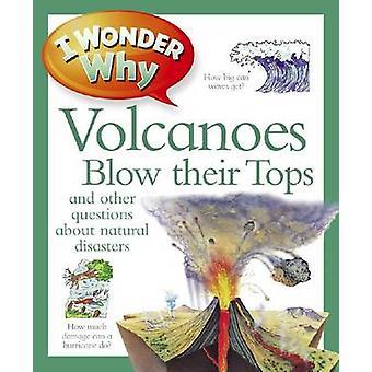 Je me demande pourquoi les volcans soufflent leurs sommets par Rosie Greenwood - 978075343