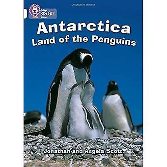 Antartide: Band 10/bianco: terra dei pinguini (Collins Big Cat)