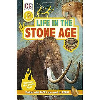 Life In The Stone Age