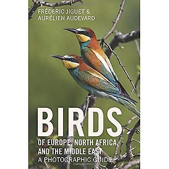 Oiseaux d'Europe, l'Afrique du Nord et Moyen-Orient: un Guide photographique