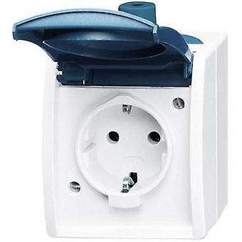 Busch-Jaeger PG socket Ocean (surface-mount) Blue-green 20 EW-53