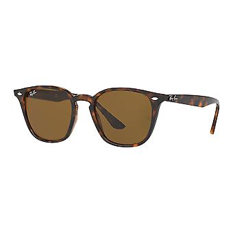 Zonnebrillen Ray - Ban RB4258 RB4258 710/73 50