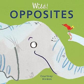 Opposites by Courtney Dicmas - Courtney Dicmas - 9781846439971 Book