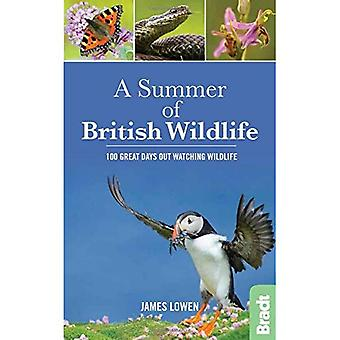 A Summer of British Wildlife: 100 great days out watching wildlife - Bradt Travel Guides (Wildlife Guides)