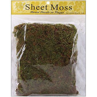 Spanish Sheet Moss 3 Ounces Pkg Natural 21131