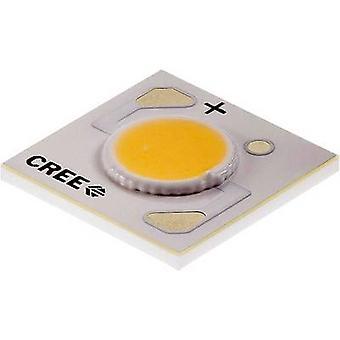 CREE HighPower LED Warm white 10.9 W 395 lm 115 ° 9 V 1000 mA