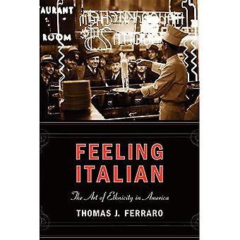 Sentimiento italiano: El arte de la etnicidad en Estados Unidos (nación de los recién llegados) (nación de serie de los recién llegados)