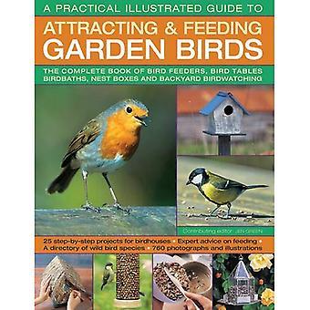 A Practical Guide illustré pour attirer & nourrir les oiseaux du jardin: le livre complet de mangeoires d'oiseaux, oiseaux tableaux...