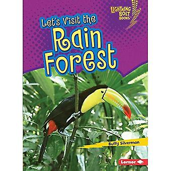 Let's Visit the Rain Forest (Lightning Bolt Books Biome Explorers)