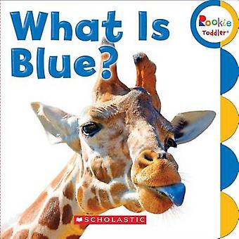 What Is Blue? - 9780531212677 Book