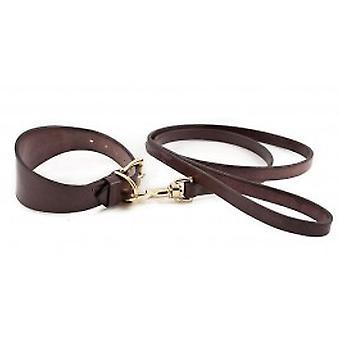 English Bridle Collar & Lead-brown