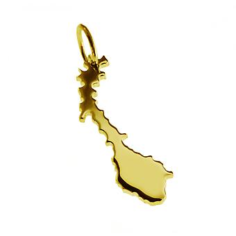 Trailer map Norway pendant in solid 585 gold