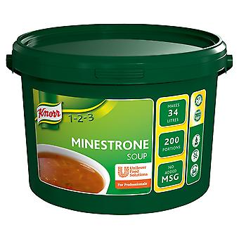 Knorr Minestrone Soup Mix